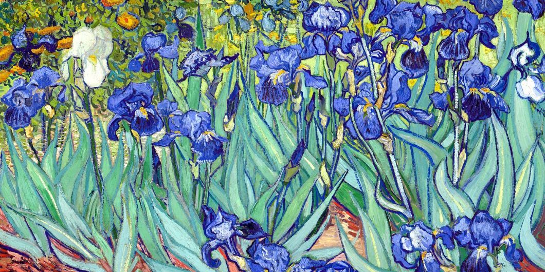irises-by-VanGogh-via-wikipedia